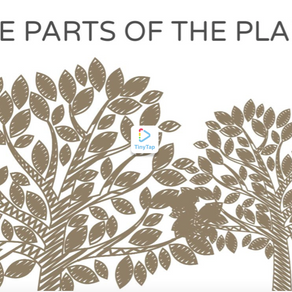 EXERCISE THE PARTS OF THE PLANT