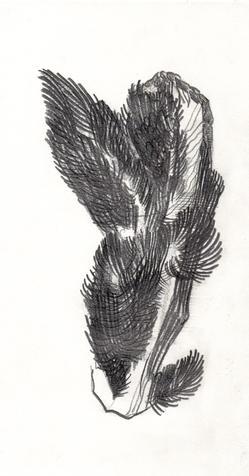 Graphite on paper