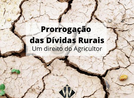 Prorrogação da Dívida Rural