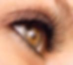 Upclose eye with lashes