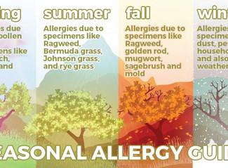 Ahhhh-choooo! Tips to Help YouSurviveYour Spring Allergies