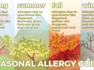 Ahhhh-choooo! Tips to Help You Survive Your Spring Allergies