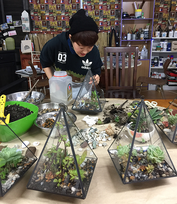 Terrarium for Cafe Vibe