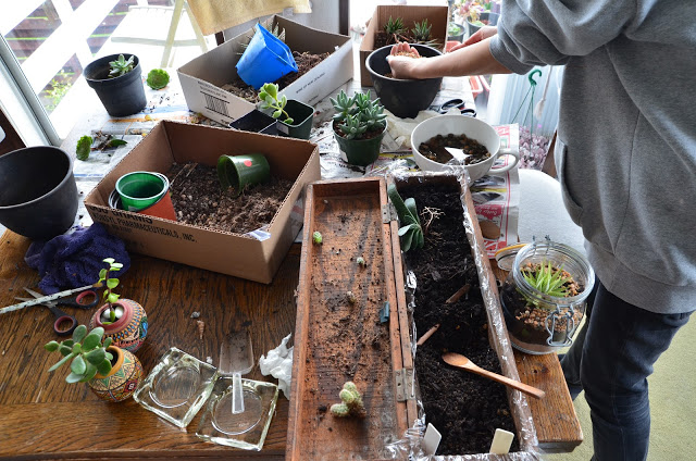 Working with plants