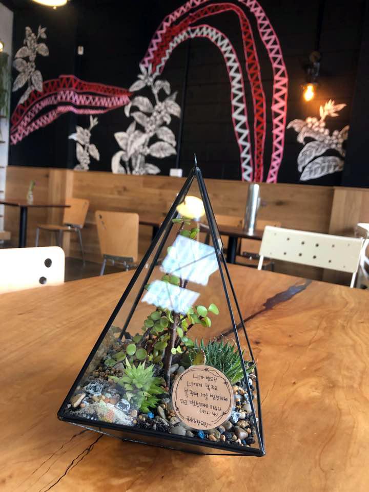 Terrarium for Cafe Vibe 2