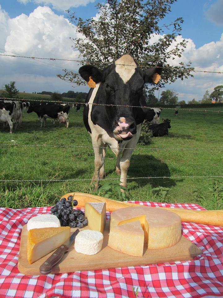 Au lait de vache et au lait de chèvre