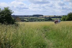 Kings Cliffe Meadow, Beyond Oak Lane