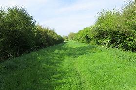 Morehay Lane, Bridge Street to Orchard Lane