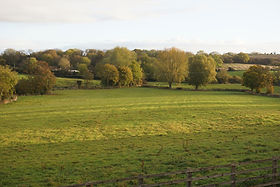Fields From Both Bridge Street & Park Street