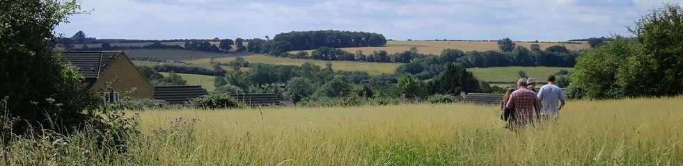 Kings Cliffe Meadow