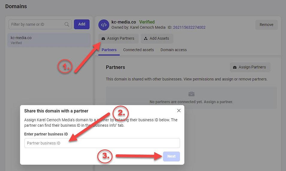 Assigning-domain-to-Partner.jpg