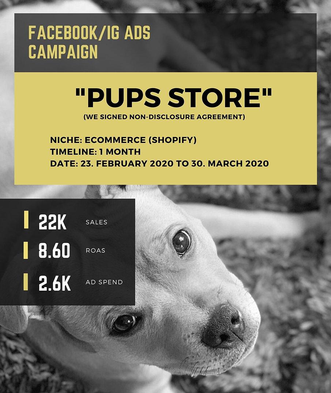 pups-show.jpg