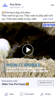 Video ad 3- ad copy(Owning a dog).png
