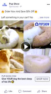 Video ad - ad copy(The Pup Show is a premium) - Copy 2.png