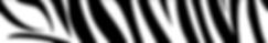 Screen Shot 2020-04-07 at 3.32.58 PM.png