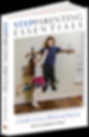 MBarrowStepParent3D_1038x1600 copy.png