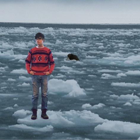 Infomercial: Alaska Wild!