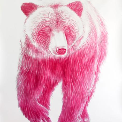 Magenta Bear #2