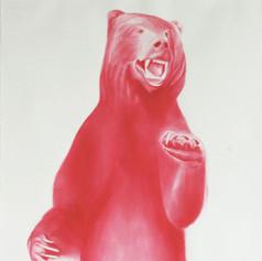 Magenta Bear