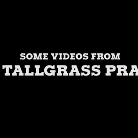 Some Videos from the Wild West: The Tallgrass Prairie