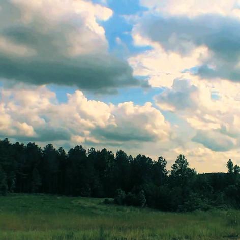 Trailer: The Epic Spartanburg