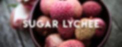 Sugar Lychee Banner.jpg