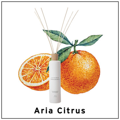 Diffuser 500ml - Aria Citrus