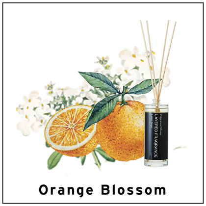 Diffuser 100ml - Orange Blossom