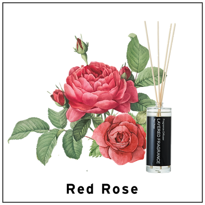 Diffuser 100ml - Red Rose