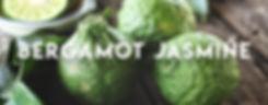 Bergamot Jasmine.jpg
