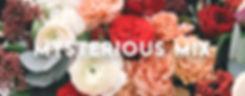 mysterious mix Banner.jpg
