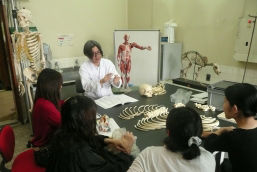 東京藝術大学美術解剖学研究室の授業風景