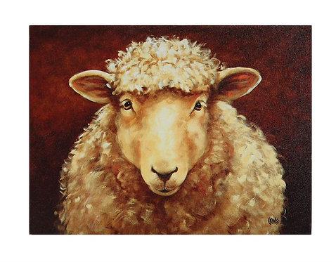 Sheep Canvas