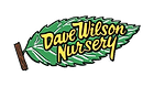 dave wilson.png