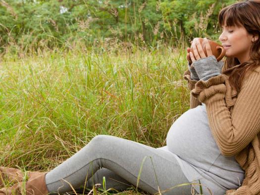 Caffeine, Your Pregnancy and Yerba Maté