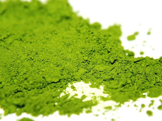What Is The Difference Between Mate and Matcha?