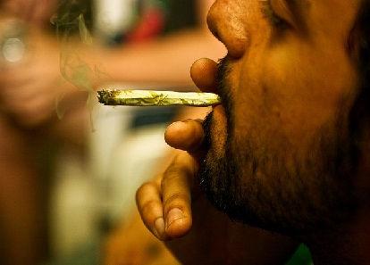 Progressive Diagnostics - Drug Info - Cannabis