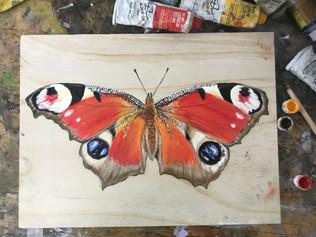 Butterfly 7, 2018