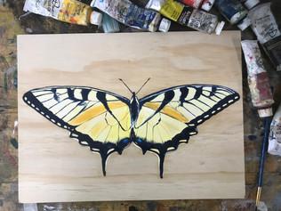 Butterfly 3, 2018