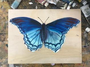 Butterfly 2, 2018