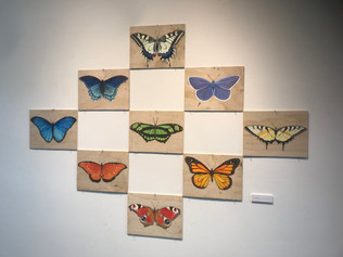 Butterfly Series (9), 2018