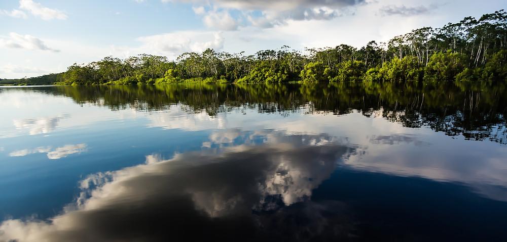 Peru Amazon Ayahuasca Trip 2017