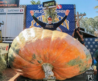 Seeds from 2020 World Championship Pumpkin Weigh-Off