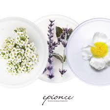 Flower Power – Unique Ingredients In Epionce Products