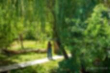 Bosque Aldea del Valle Pisco Elqui