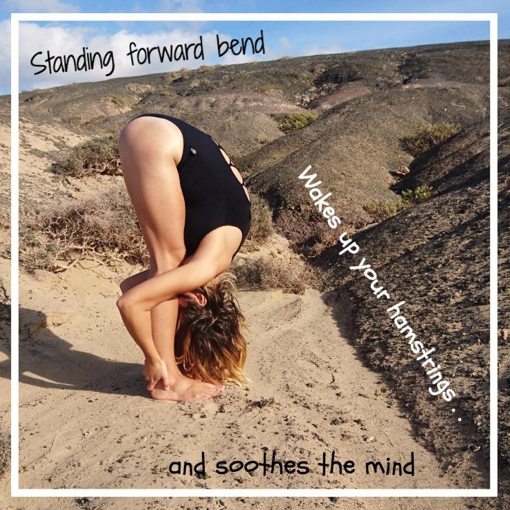 Standing forward bend