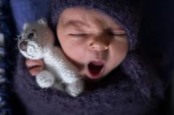 Fotoshooting Neugeborene