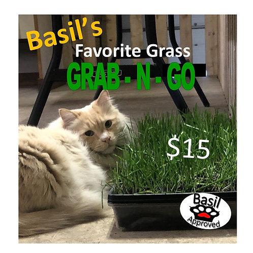 Basil's Favorite Grass Grab-N-Go