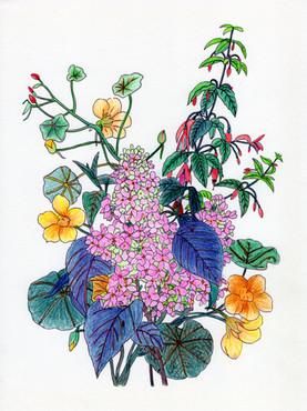 花系列:心花朵朵