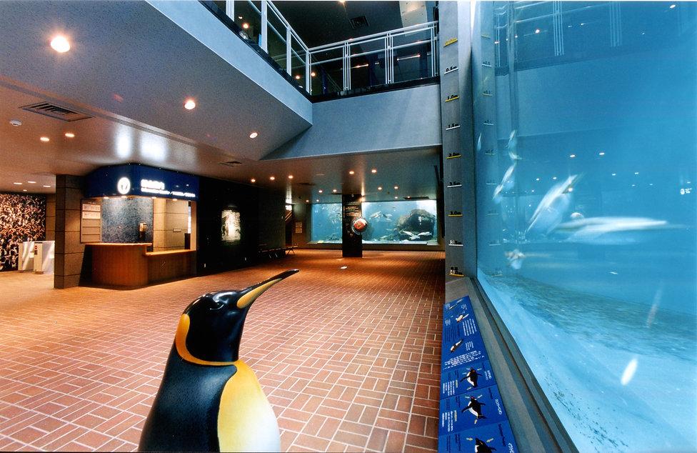 ペンギン水族館10.jpg